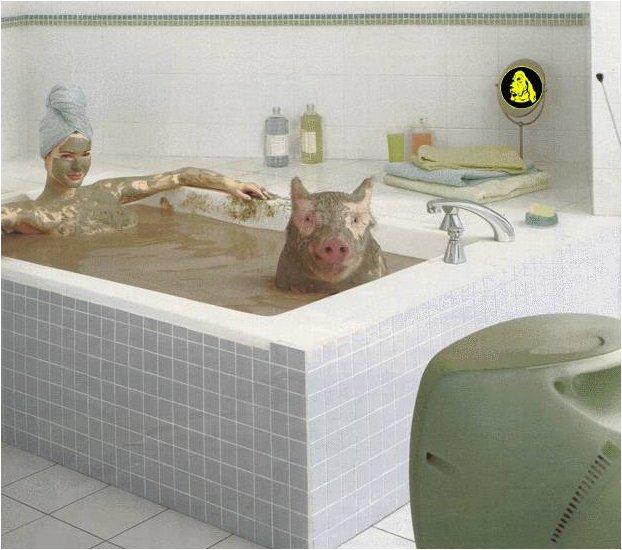 Свинья везде грязь найдет!