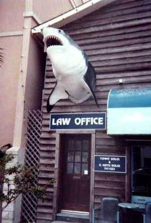 Офис Goblina - народной акулы русского капитализма
