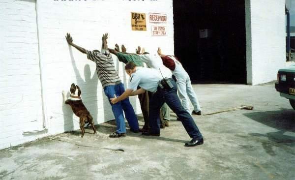 На стену смешные картинки tynu40k goblina