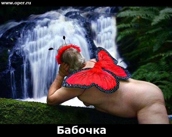 Бабочка   [R]