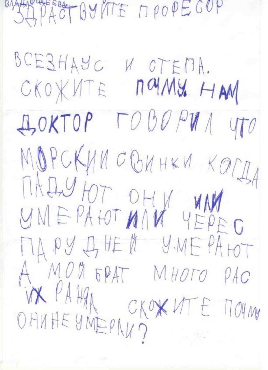 Письмо профессору