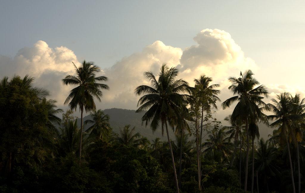 Таиландский закат