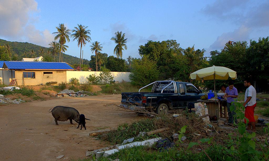 Тайская семья у дома