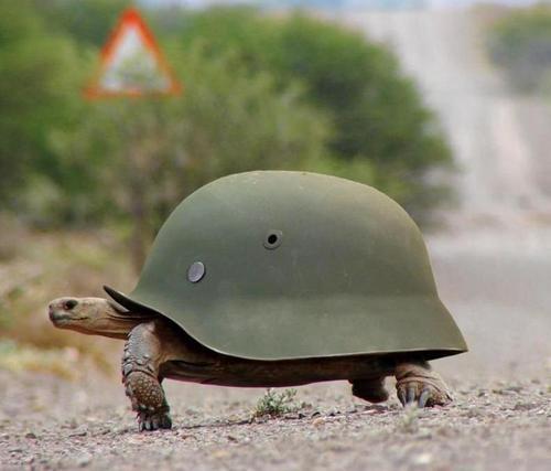 Рептилия на службе рейха
