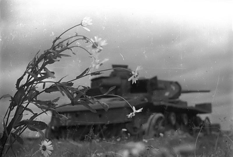 Оригинальное название фото: «Времена года советского бронебойщика. Лето». (c)waralbum.ru