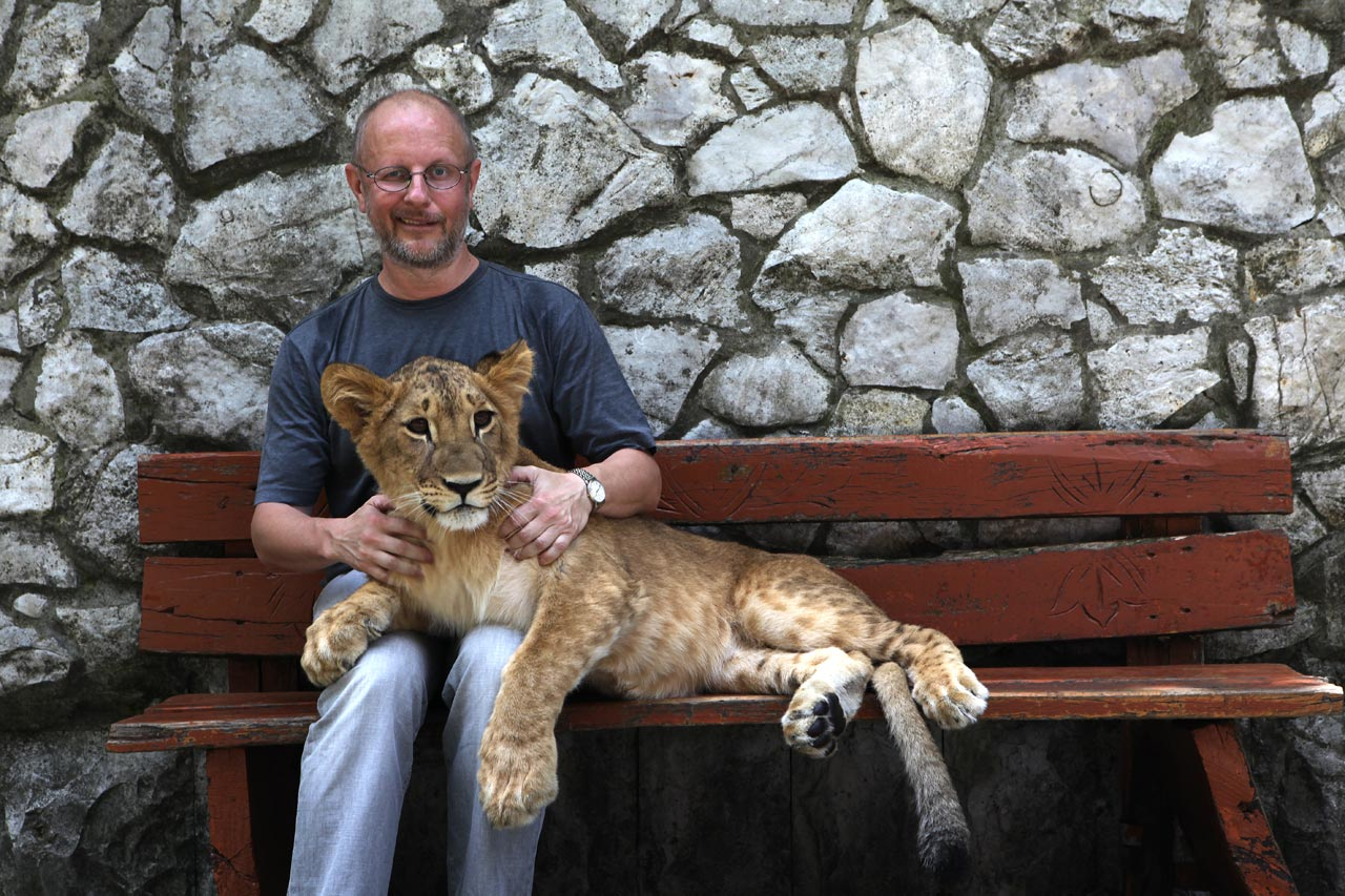 Сочинский львёнок