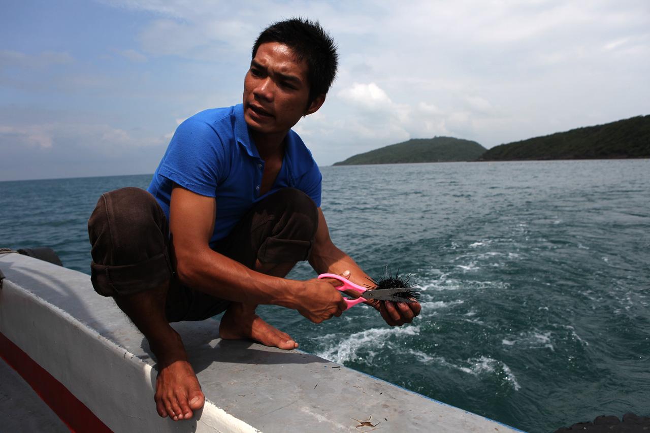 Вьетнамская стрижка морского ежа