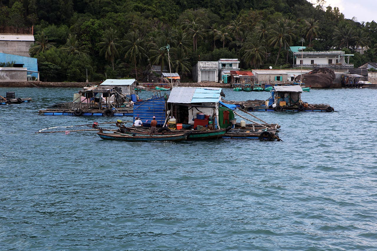 Вьетнамский посёлок на плотах
