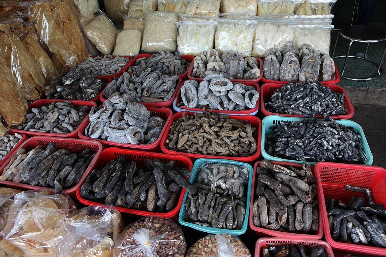 Вьетнамские морские черви