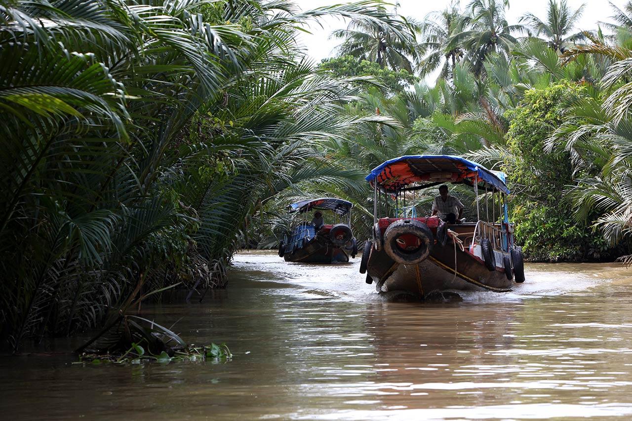 Вход в мангровые протоки