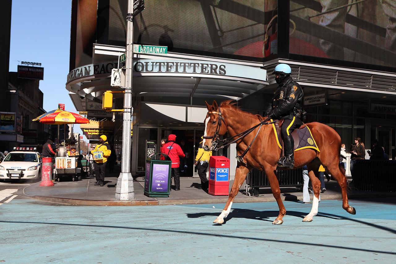 Конный полицейский на Таймс сквер