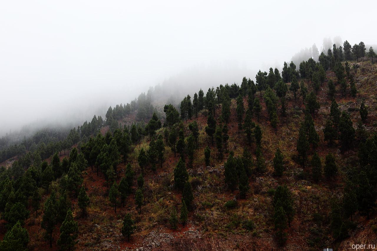 Вид на перевал возле Сантьяго дель Тейде