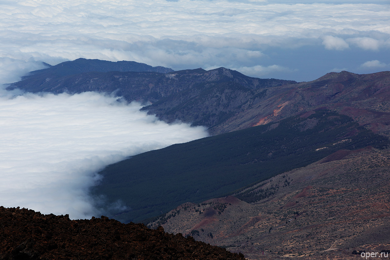 Канарские леса и облака