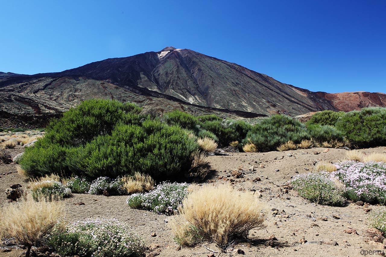 Канарский вулкан Тейде