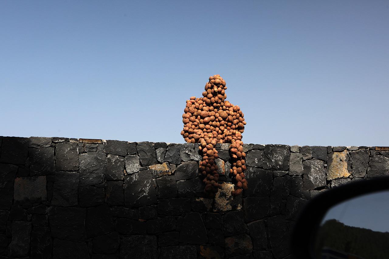 Канарский картофельный человек