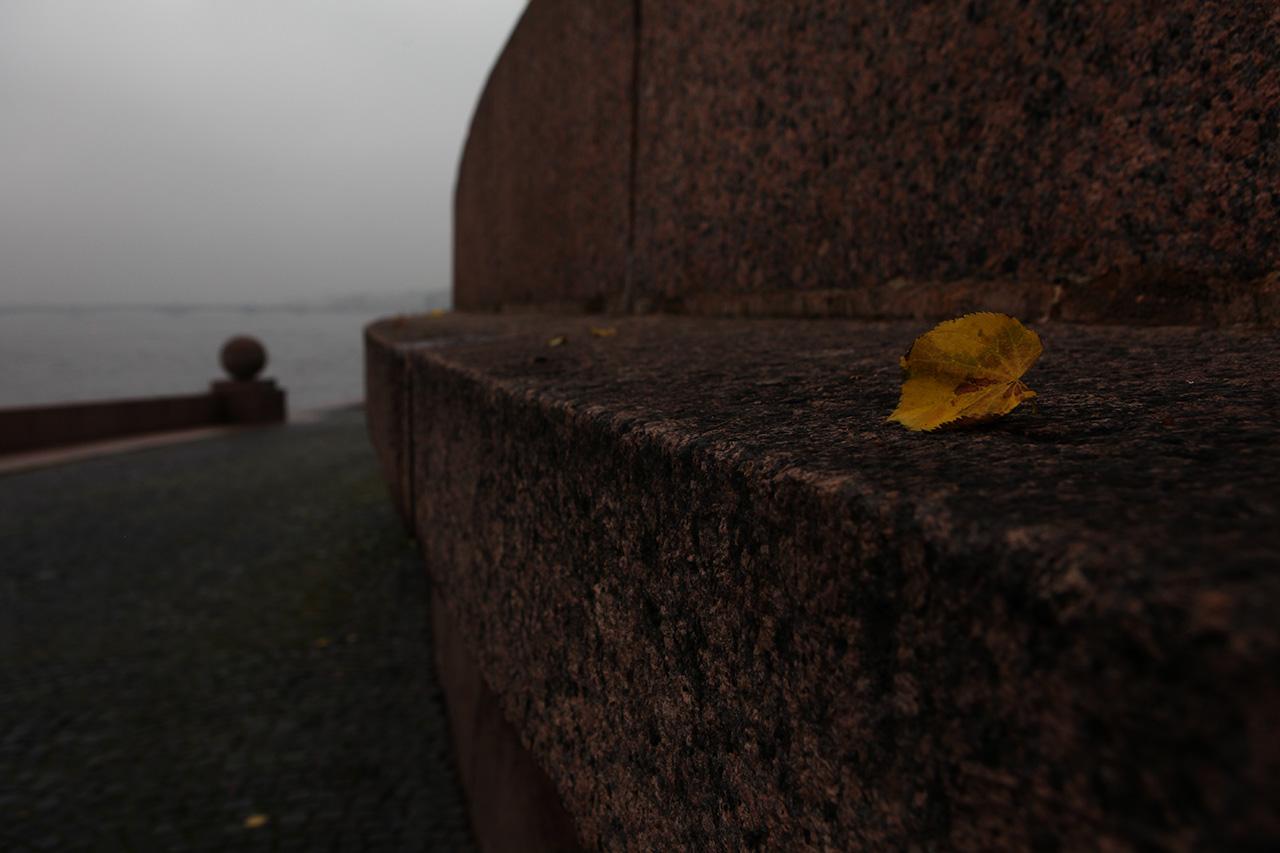 Осень на стрелке Васильевского острова