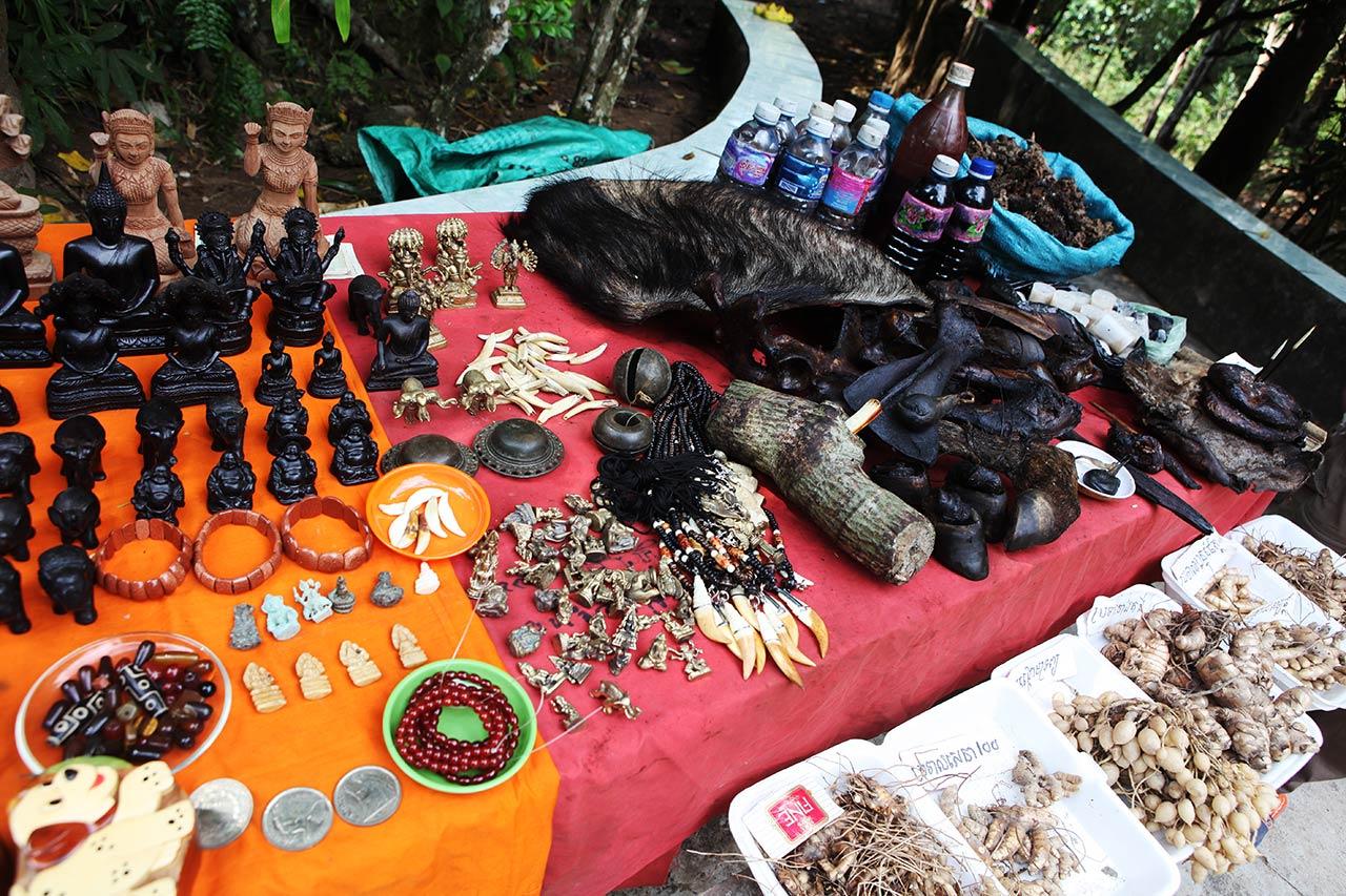 Запчасти кхмерского кабана