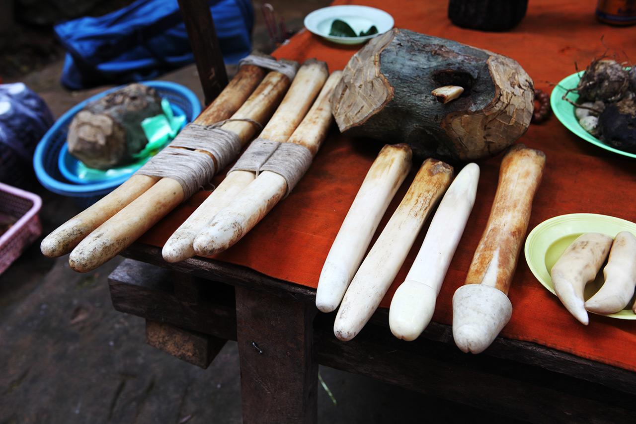 Кхмерские костяные члены
