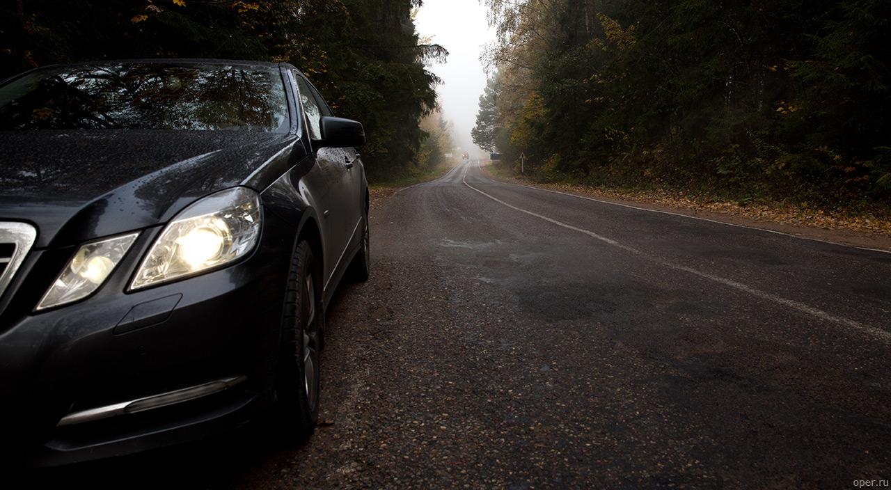 Болид в туманном лесу