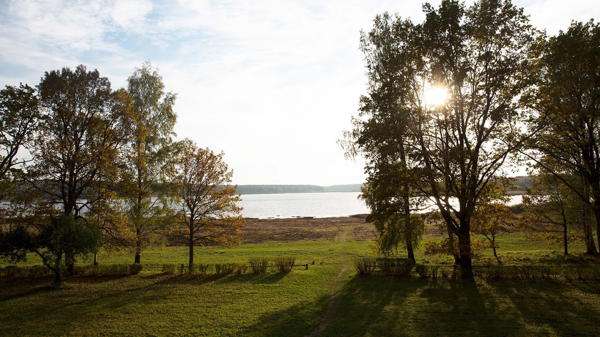 Озеро в Пушкинских горах
