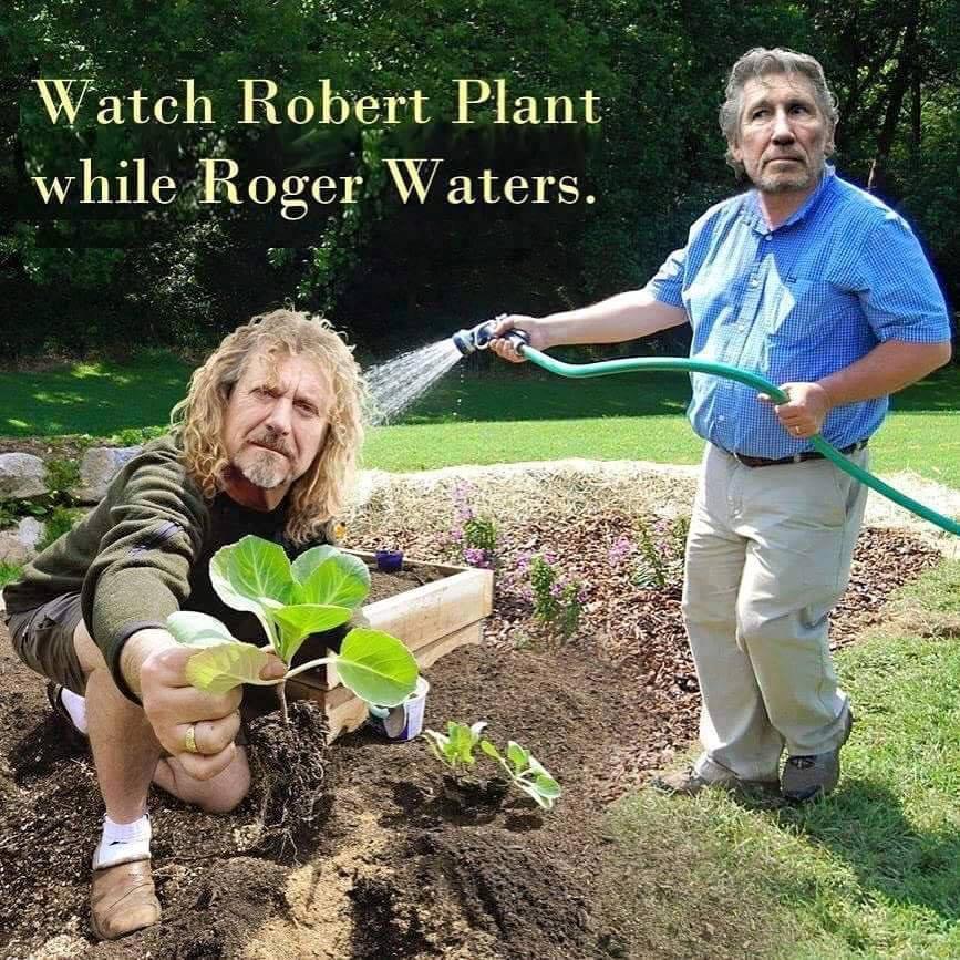 Robert Plant & Roger Waters