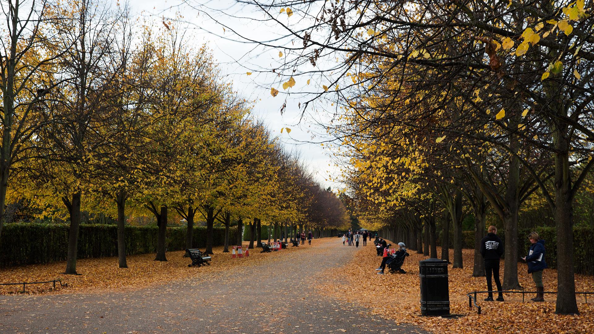 Риджентс-парк