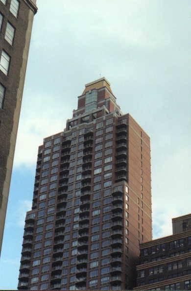 Сигал, который живет на крыше