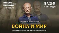 Дмитрий ПУЧКОВ и Иван ПАНКИН | ВОЙНА и МИР