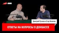 Дмитрий Goblin Пучков - ответы на вопросы о Донбассе