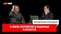 Егор Яковлев о связи эсеровского подполья с Антантой