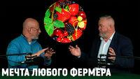 Иван Новиков о разработке средств для защиты растений и увеличения урожая без «жёсткой» химии