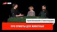 Галина Кашулина про приюты для животных